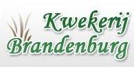 Logo tuincentrum Kwekerij Brandenburg