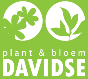 Logo tuincentrum Plant & Bloem Davidse