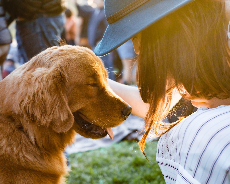 Vrouw past op een hond