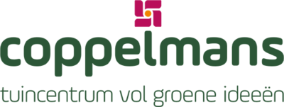 Logo Coppelmans Veldhoven Sondervick