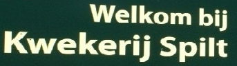 Logo tuincentrum Kwekerij Spilt