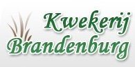 Logo tuincentrum Kwekerij Brandenburg