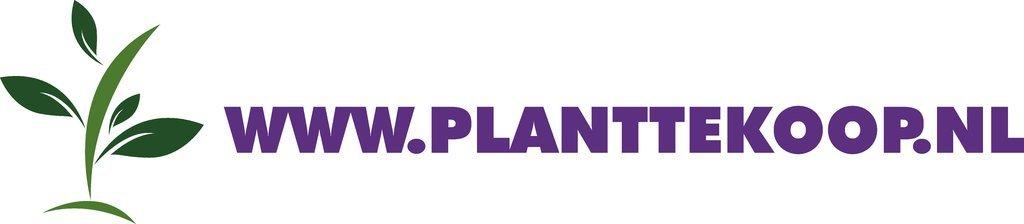 Logo tuincentrum Planttekoop.nl